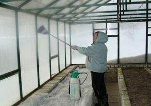 дымовые шашки для дезинфекции теплицы