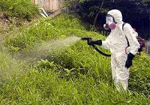 инсектициды список препаратов
