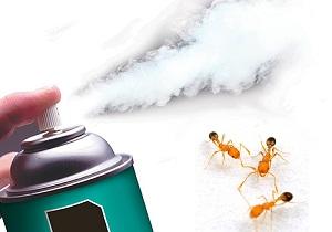 борная кислота от муравьев в квартире рецепт