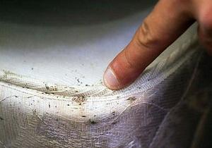 постельные клопы укусы фото симптомы как избавиться