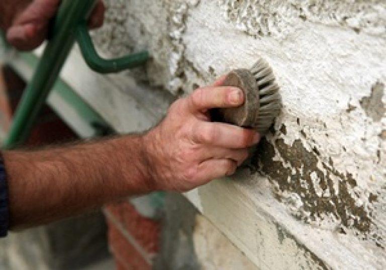 Как избавиться от плесени на стенах в квартире и доме навсег.