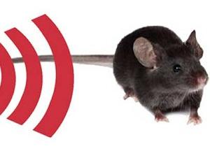 отпугиватель мышей ультразвуковой отзывы