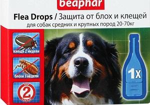 блохи у собак лечение в домашних условиях