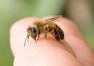 средство от укусов насекомых