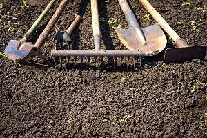 чем обработать землю осенью от болезней и вредителей