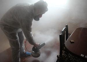 правила обработки помещений сухим туманом против насекомых