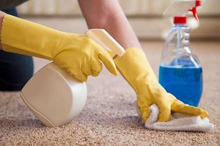 Как очистить ковер от пылевых клещей натуральными средствами в домашних условиях